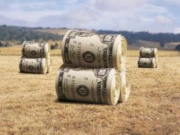 Інвестиції у сільське господарство сягнули 10,5 млрд грн, - Мінагрополітики