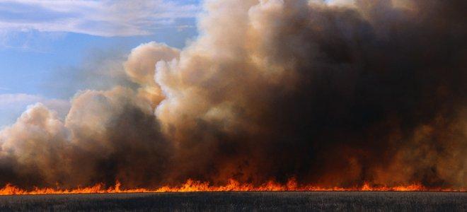 Хмари диму над Вроцлавом. Горить поле у вроцлавських Злотниках