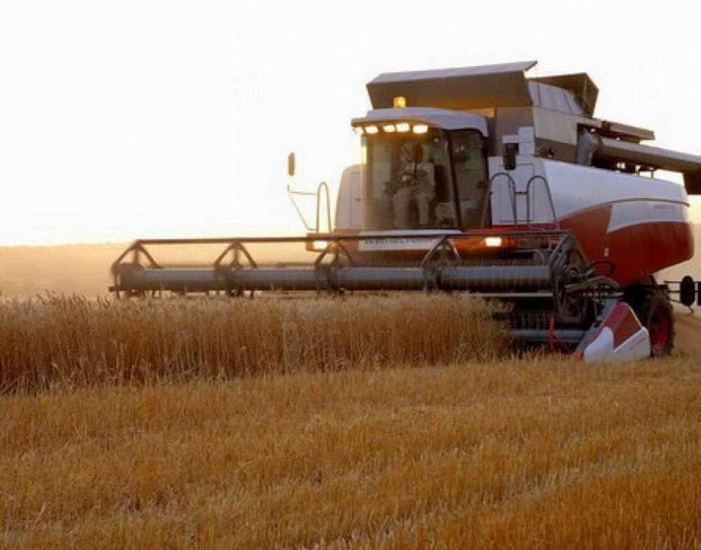 Жнива-2018: Ранніх зернових вже намолочено майже 31 млн тонн
