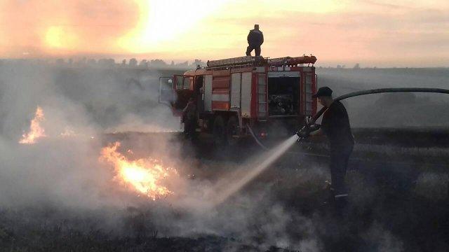 У Пустомитівському районі вигоріло 2 гектари стерні (фото/відео)