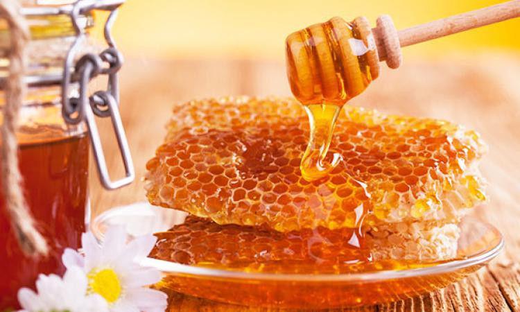 Польський мед на експорт