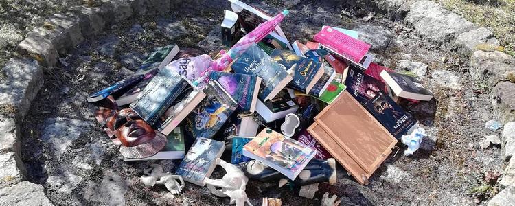 Спалювання книг. У Польщі священики палили «Гаррі Поттера», «Сутінки» і фігурки слонів