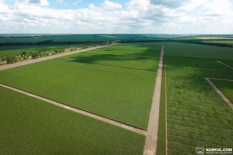Фермер поверне державі землі вартістю майже 6 млн грн