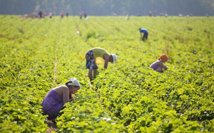 Про трудову міграцію