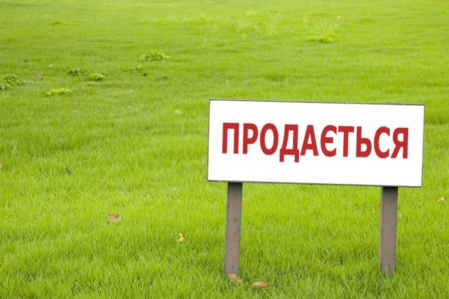 Зеленский поручил принять закон об отмене моратория на продажу земель до 1 декабря
