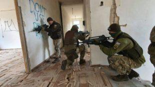 Польські та українські військові на навчаннях «Залізний вовк» у Литві