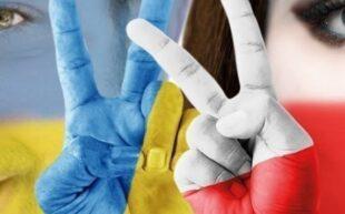 Министр сельского хозяйства Польши: Лучшего времени для польско-украинской дружбы не найти