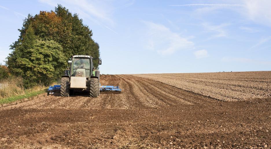 У Польщі розпочався загальний сільськогосподарський перепис