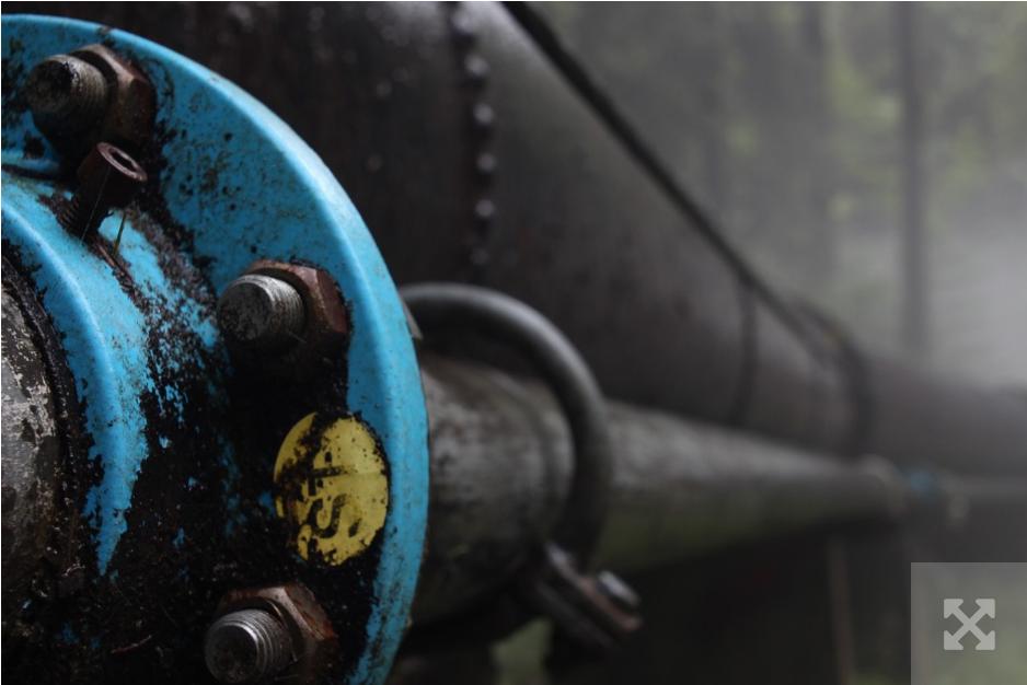 PGNiG і Нафтогаз хочуть спільно видобувати енергоресурси на Заході України