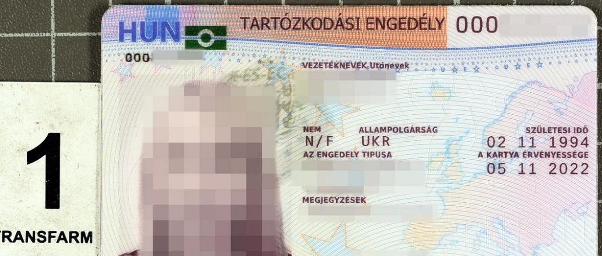 У Польщі затримали трьох українців з фальшивими угорськими посвідками