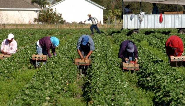 Українські заробітчани найбільше хочуть працювати в Німеччині та Польщі