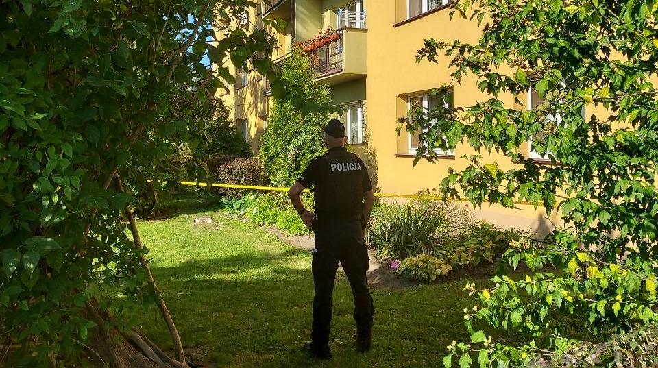 Польські ЗМІ повідомили деталі трагедії в місті Тарнув, внаслідок якої загинула 7-річна дитина – громадянин України